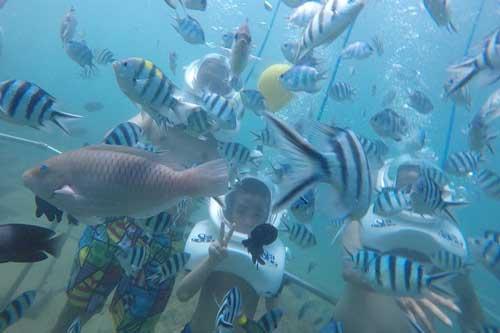 Đi bộ dưới đáy biển, được nhiều du khách ưa thích